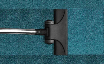 How To Choose the Best Texas Carpet Cleaner for Home and Offices