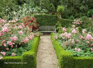 Great Ideas For Garden Design